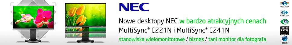 Nec MultiSync E221N E241N